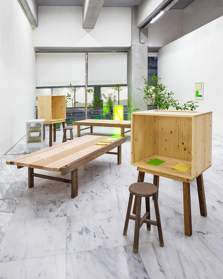 黃博志    五百棵檸檬樹:給美術館的提案—樹 裝置、複合媒材, 2013 尺寸可變  台北美術獎