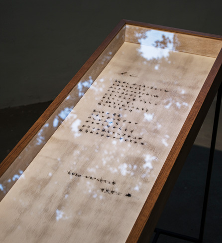 Chih-Hung LIU    Three Indexes Series: Sonnet mosquitoes, lacquer, beeswax, wooden frame, 2014-2016 30×60×80cm