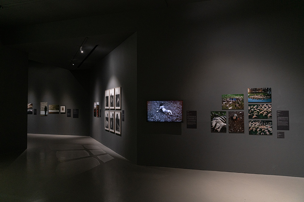 「塩田千春:顫動的靈魂」展出現場  2021   圖像由臺北市立美術館提供,  攝影:林冠名